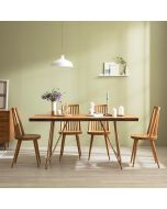 Tavolo Scandinavian Natural Woodslab Table with X Legs 1600 (Gold) Set (Table & 4 Tavolo Chairs)
